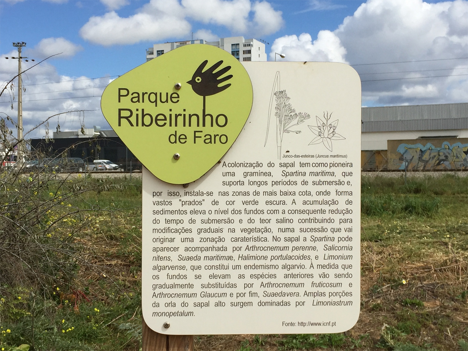 Parque Ribeirinho de Faro: keep-fit trail